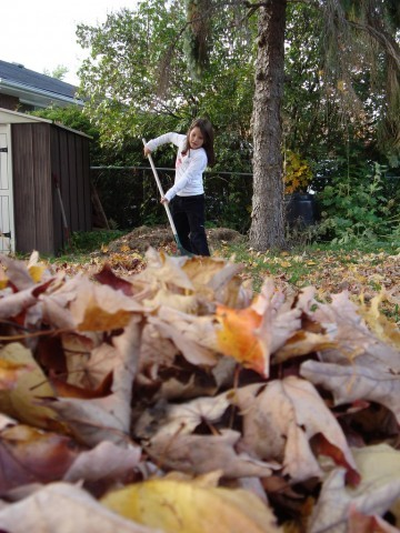 child-raking-leaves-by-mike-babcock.jpg