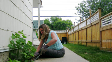 Spring Cleaning Outdoors: Lawn & Garden Tips