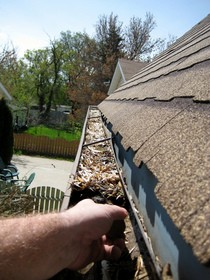 clogged-gutters-by-shareski.jpg