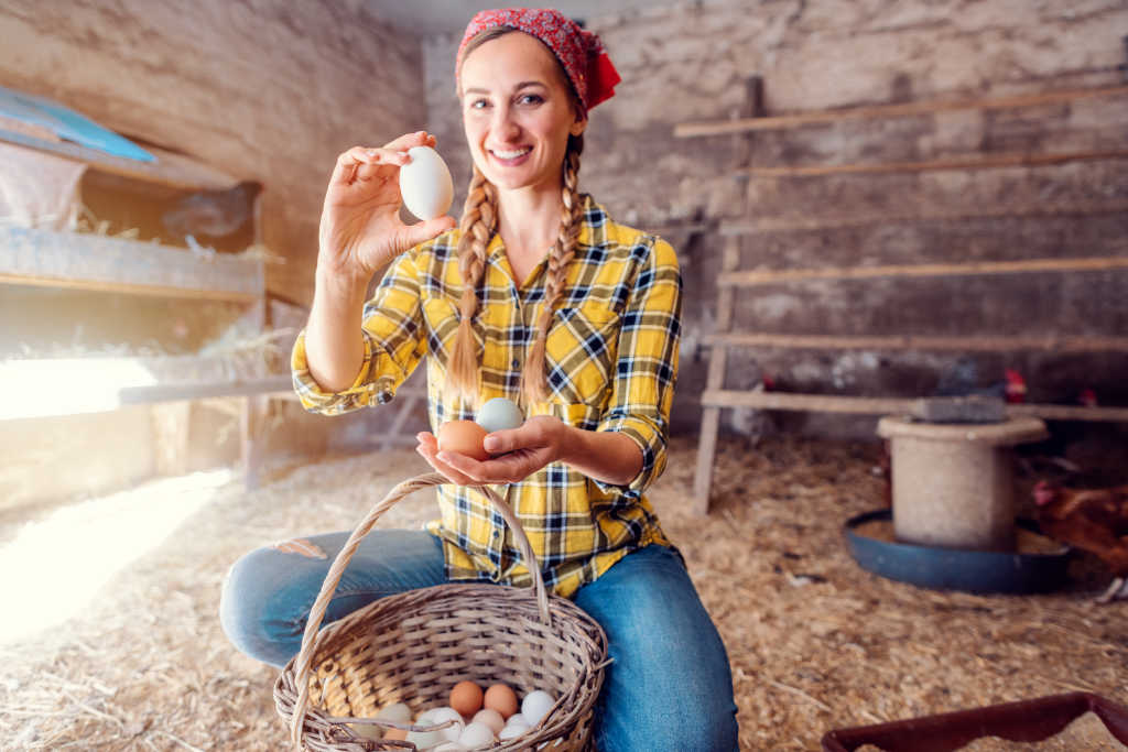 It's so exciting once your chickens start laying their first eggs. But here's what you need to know first!