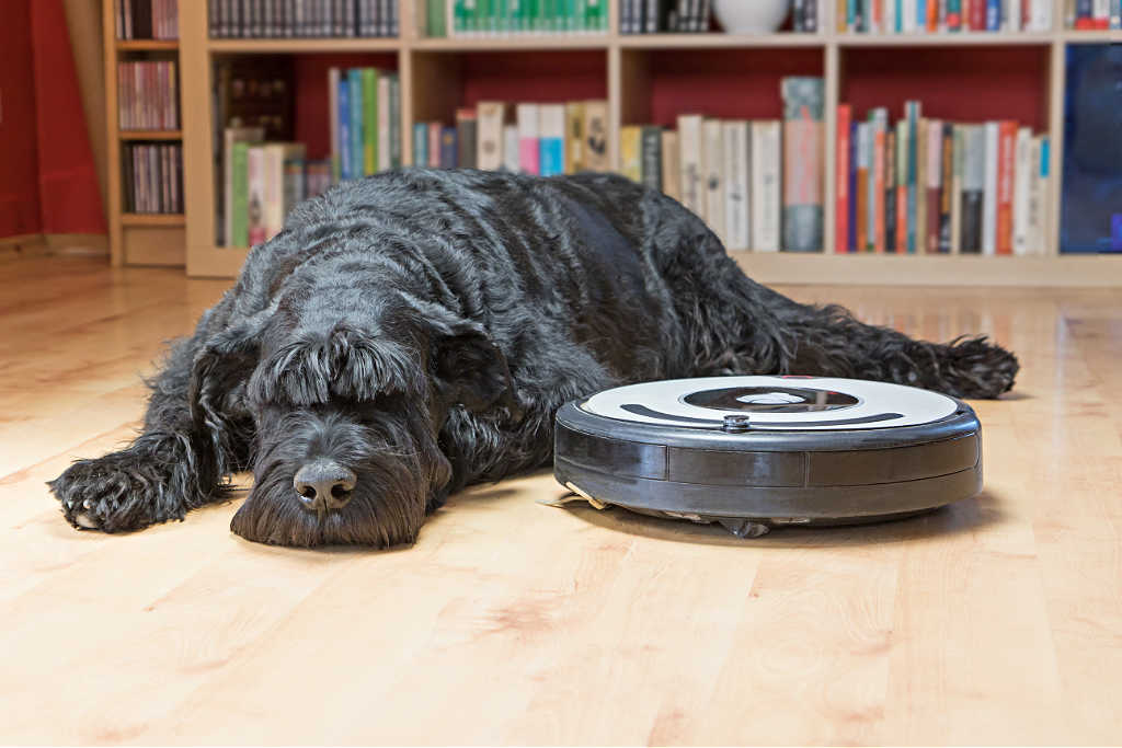 Dog fur is definitely not a problem for the two robot vacuum cleaners that I own!
