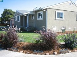 exterior-house-landscaped-by-staged4more.jpg