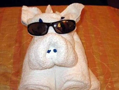 folded-towel-pig.jpg
