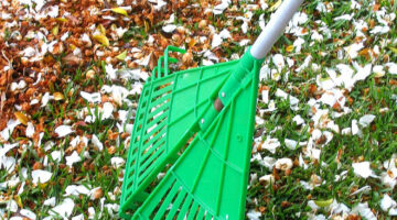 14 Unique Rakes With A Purpose – From Leaf Rakes To Garden Rakes And Everything In Between
