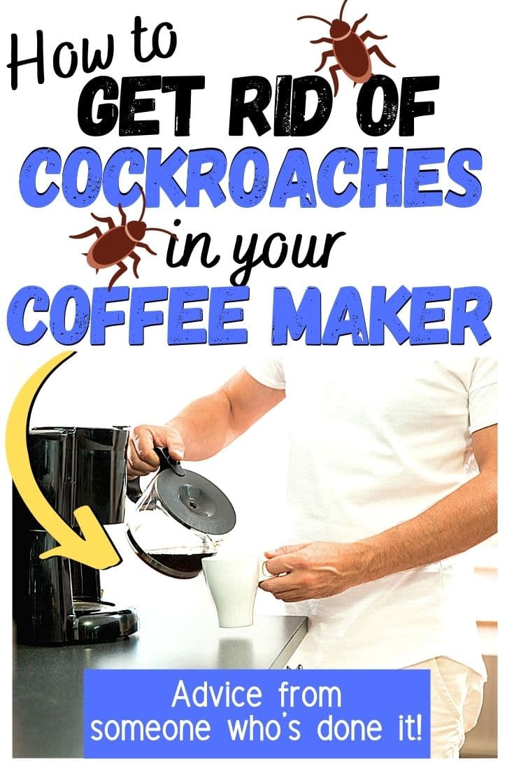 Find Cockroaches In Your Coffee Maker? (I Did) Here\'s Why Roaches Like Coffee Machines, Plus How To Get Rid Of Roaches & Disinfect Your Coffee Maker