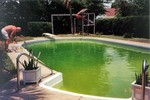 Swimming pool gone bad... blue water turned green from algae.