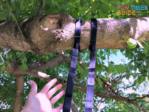 I looped 2 hammock straps to the tree branch and secured the excess slack out of the way.