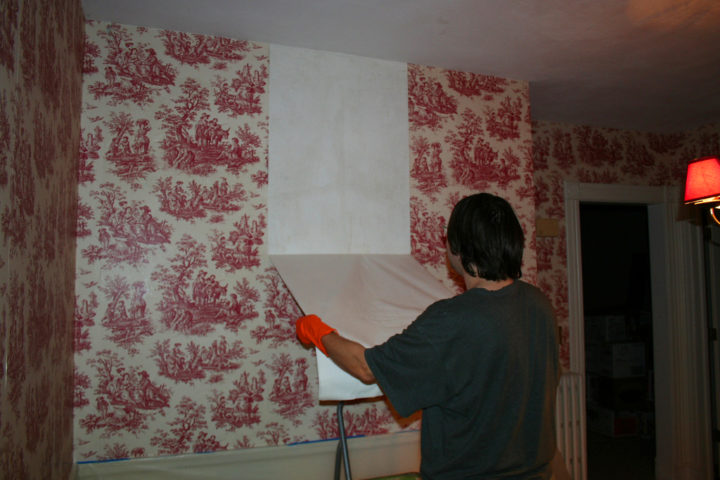 Home Wallpaper Removal By Firepile