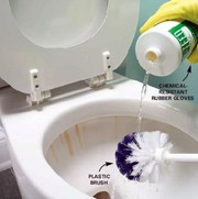 how-to-clean-a-toilet.jpg