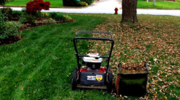 We've All Resorted To Mowing Leaves Before, Right?