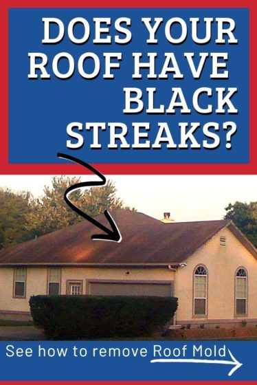 See how to remove black streaks from your roof.