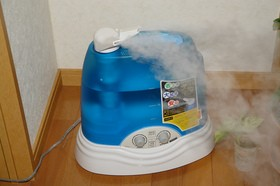 Moisture Levels Inside Your Home: How To Tell If You Need A Humidifier Or A Dehumidifier