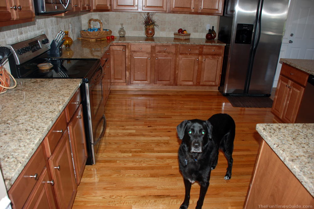 Best Hardwood Floor best hardwood flooring types Kitchen Hardwood Floorjpg