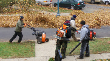 Leaf Blowers vs Leaf Rakes – Which Is Best & Why?