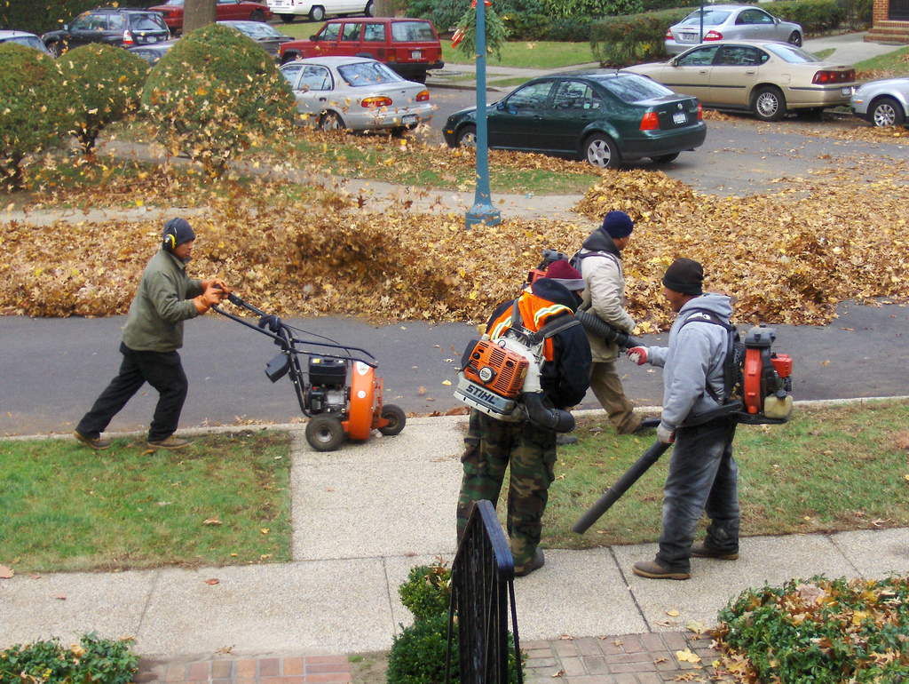 Leaf Blowers vs Leaf Rakes Which Is Best Why The Household