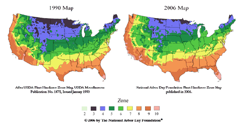 flower plant zone hardiness maps updated the household tips guide