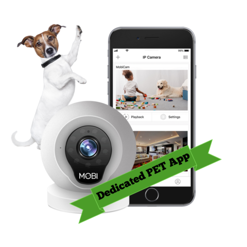 See what your dog does when you're not home with this wifi pet camera & monitoring system!