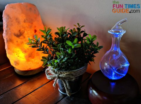 I LOVE the look of a glass essential oil nebulizer! I keep this one in my living room.
