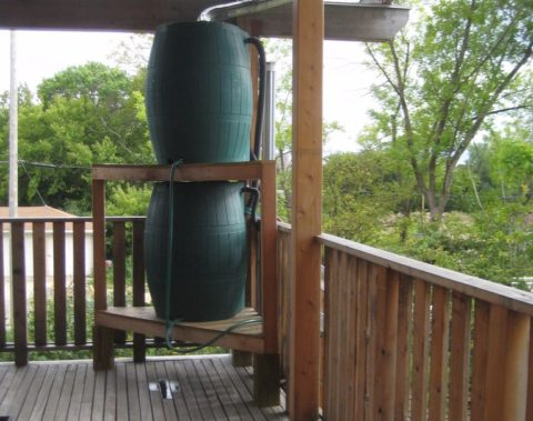 Rainwater collection can help save money on your water bill.