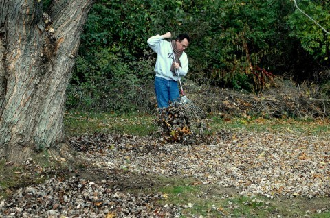 raking-leaves-by-a-mothers-heart-a-moment-in-time.jpg