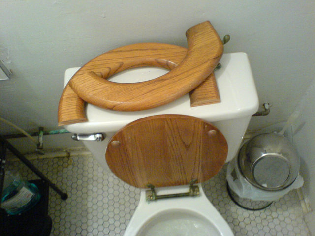 Replacing Toilet Seat By Theop