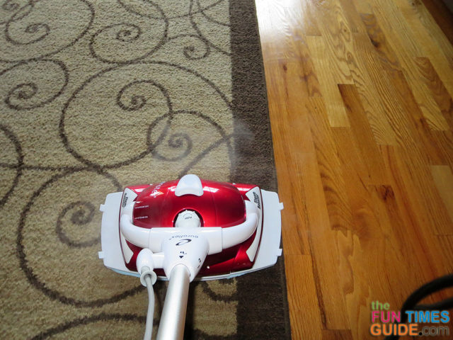 What You Need To Know About Steam Cleaning Hardwood Floors
