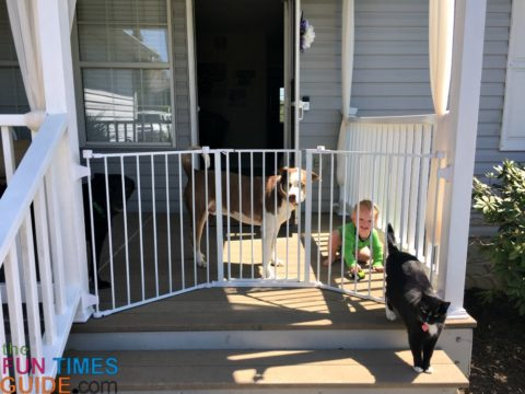 This walk-through baby gate is perfect for keeping kids and pets on the porch!